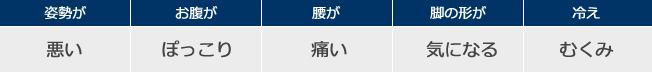 target_seitai